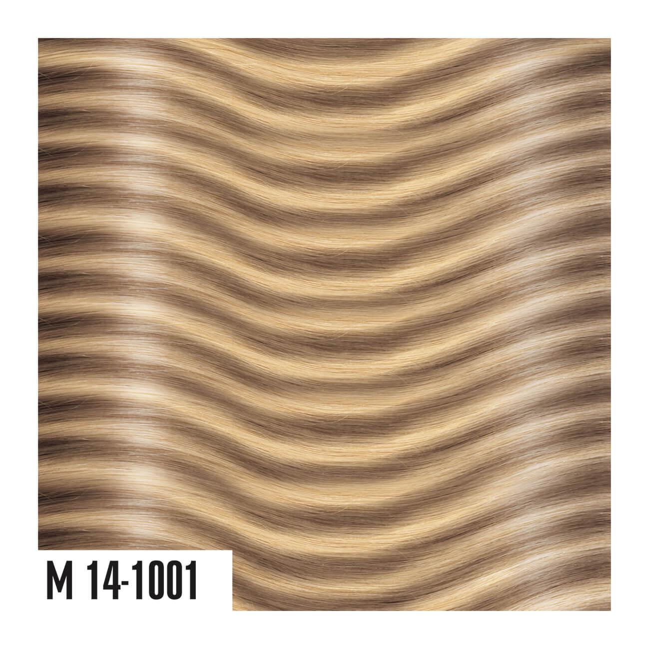 M14-1001
