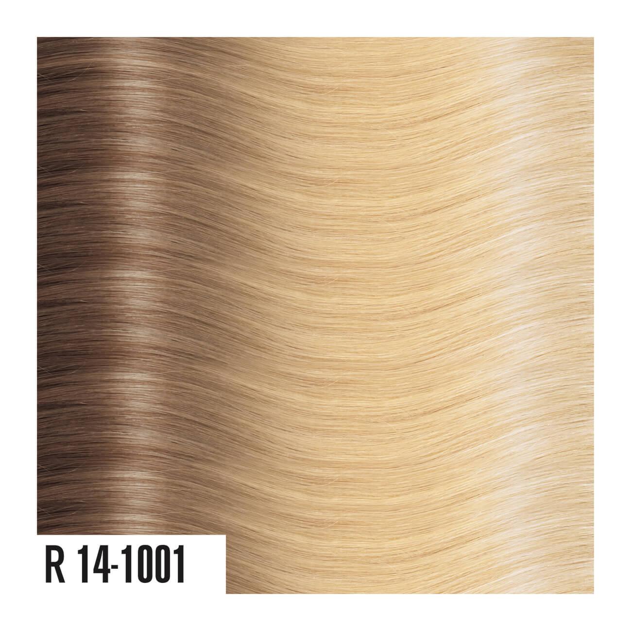 R14-1001