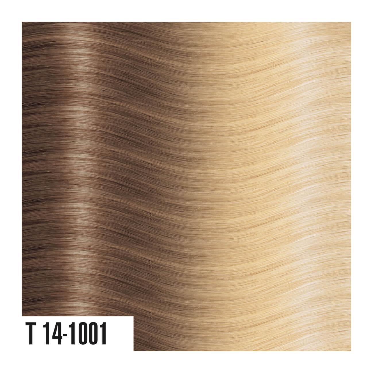 T14-1001