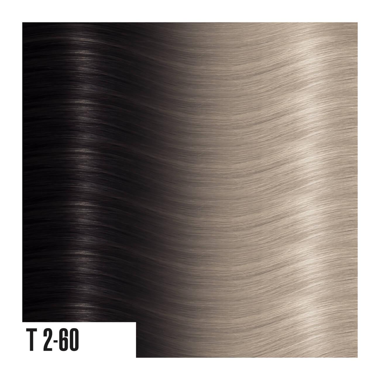 T2-60