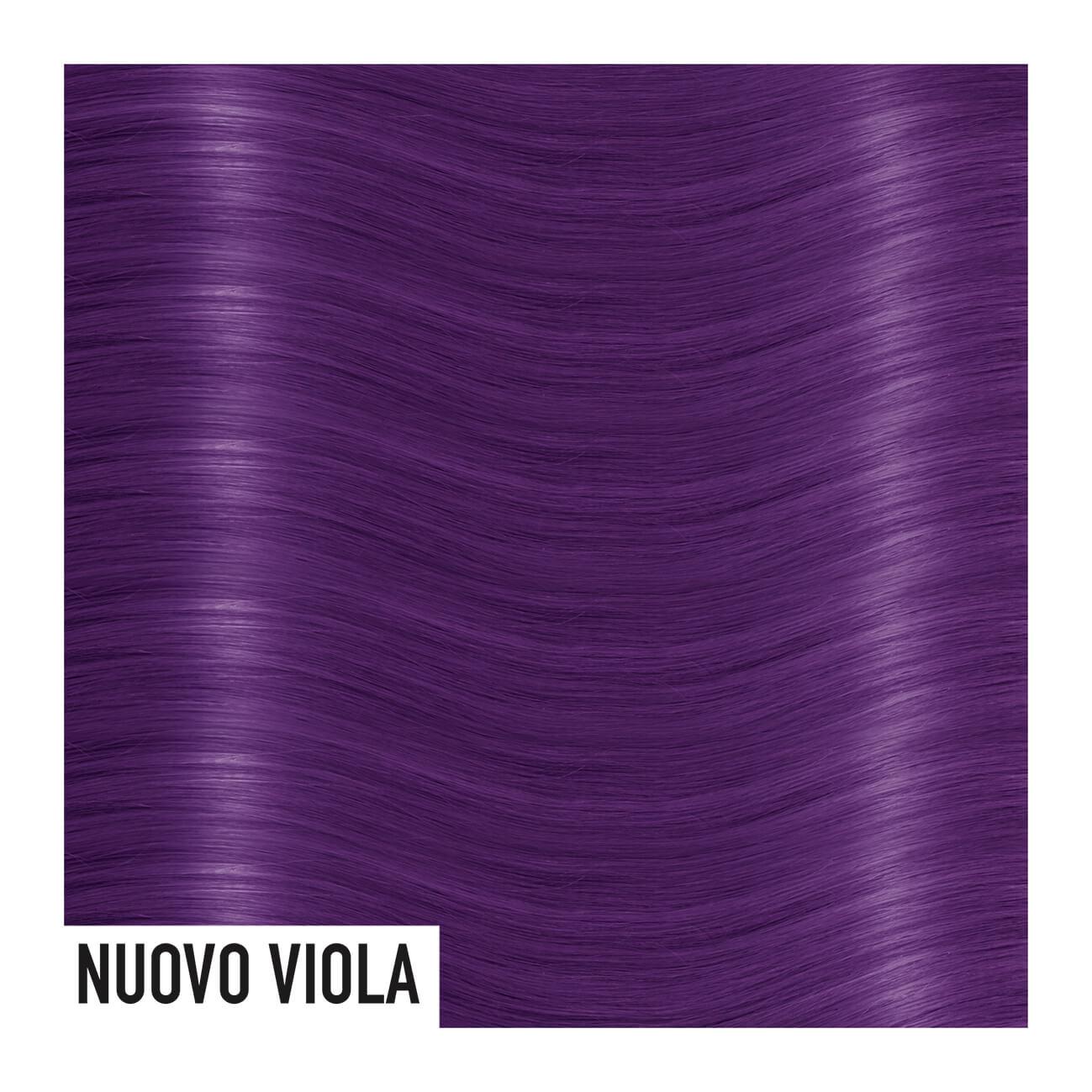 nuovo-viola